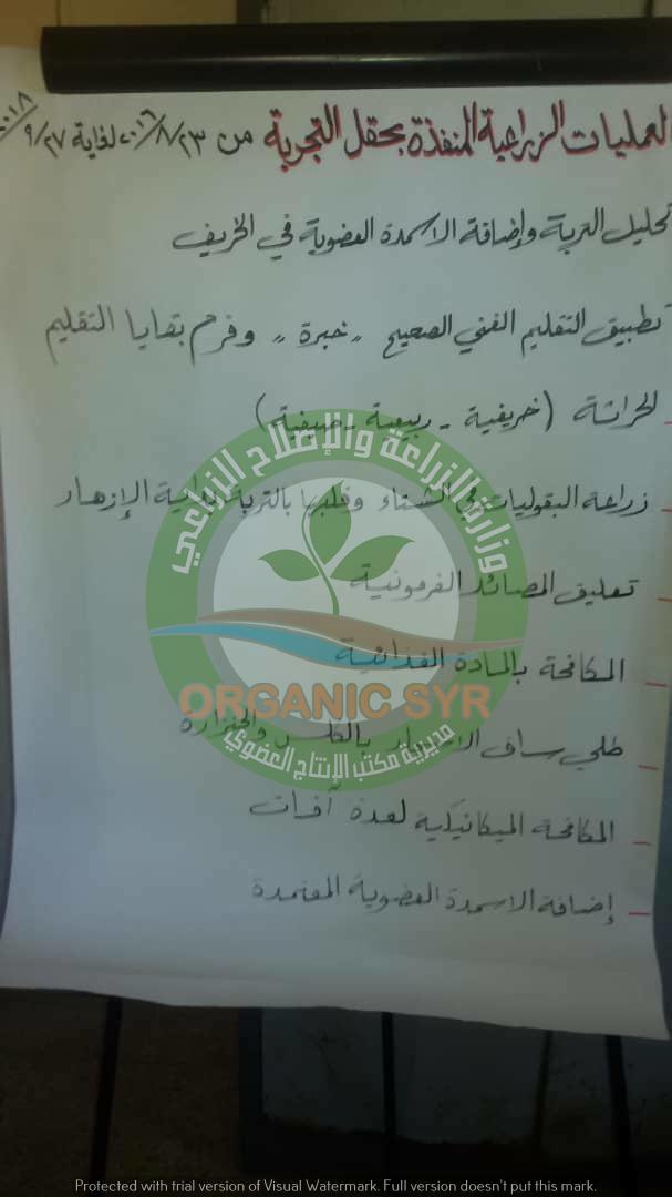 Organic Syria